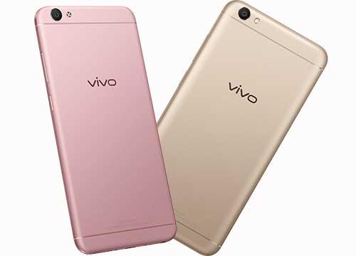 review desain vivo v5