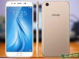 harga Vivo V5 plus spesifikasi dan review